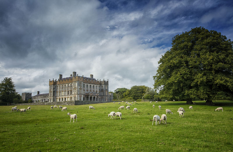 Borris House, Borris, Co Carlow