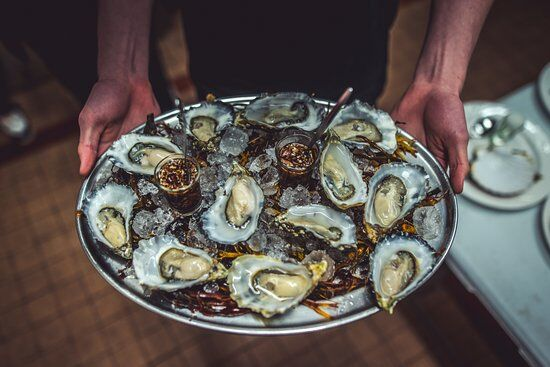 Wild Atlantic Oysters