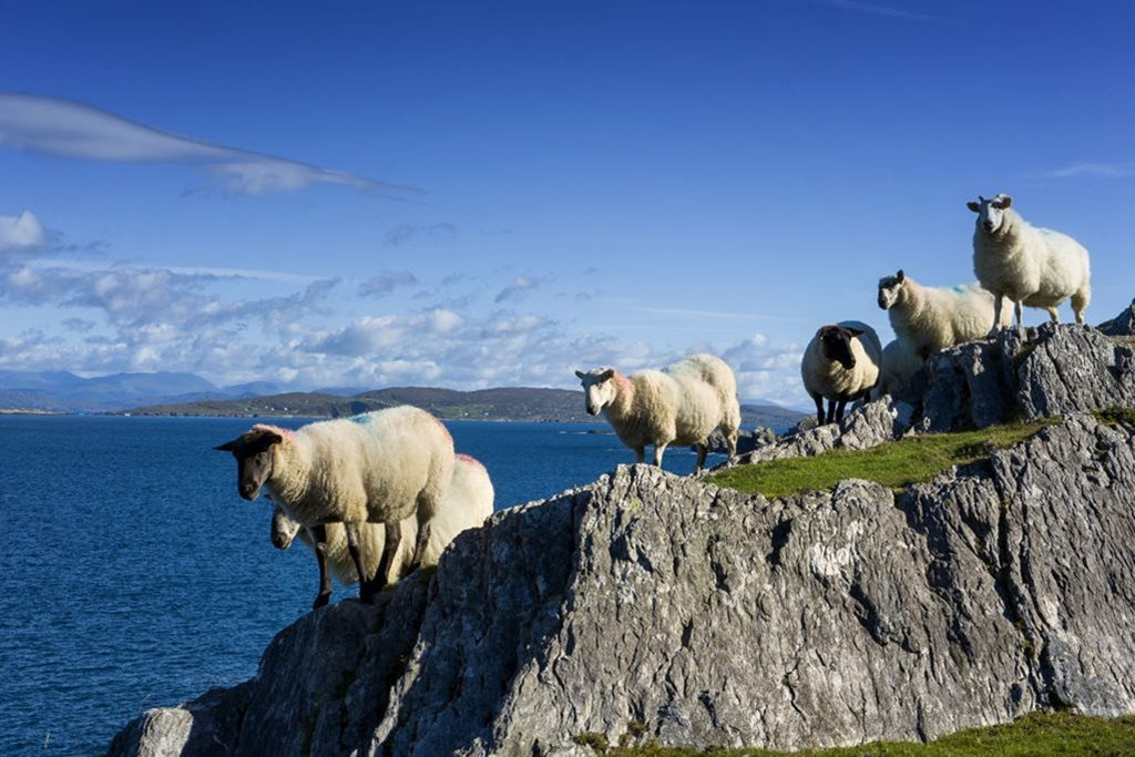 The Wild Atlantic Way - Southern Peninsulas